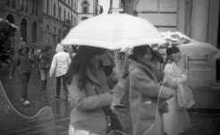 Umbrella + Lemon Juice032